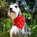 Dog bandana reindeer gold Dog | Dimples Sew Happy