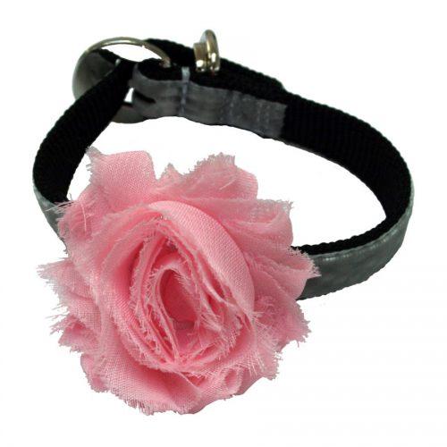 Baby Pink Flower Dog Collar